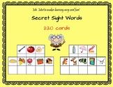 Secret Sight Words 220 Doloch Sight Words