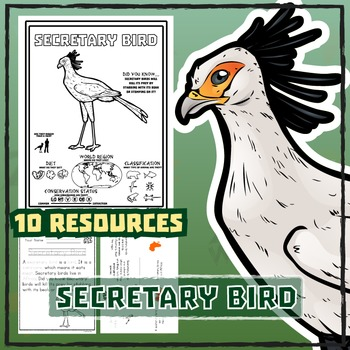 Secretary Bird -- 10 Resources -- Coloring Pages, Reading & Activities