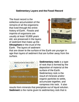 Sedimentary Layers and the Fossil Layers