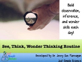 See, Think, Wonder (Observation, Inference, Questions) Science Activity