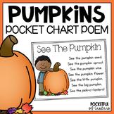Pumpkin Life Cycle Pocket Chart
