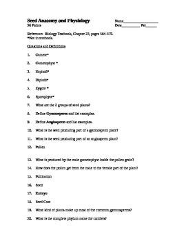 Seed Anatomy Worksheet