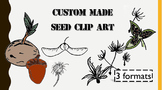 Seed Clip Art - Custom Made
