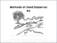 Seed Dispersal:  Student Activity Book  (NGSS 2-LS2-2)
