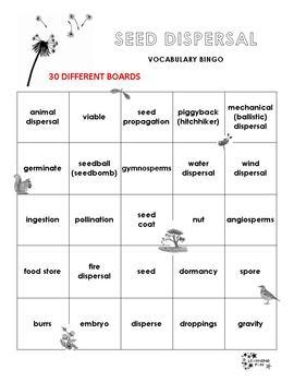 Seed Dispersal Vocabulary Bingo