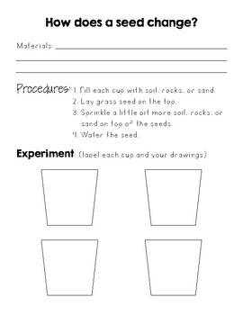 Seed Experiment