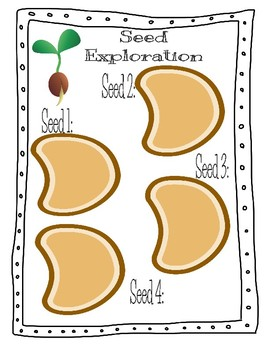 Seed Exploration
