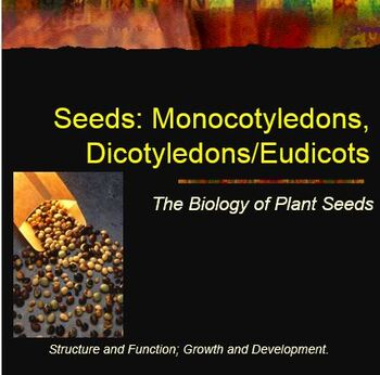Seed Germination Lab Notebook