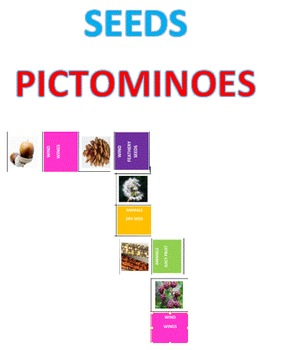 Seed Pictominoes