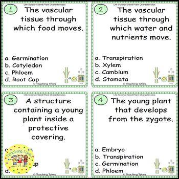 Seed Plant Characteristics Task Cards