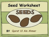 Seed (Plant) Worksheet: