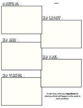 Seed Planting Experiment Hypothesis Organizer