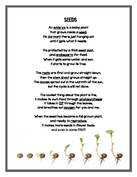 Seed Poem/Chant