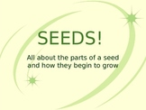 Seed Powerpoint