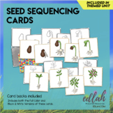 Seed Sequencing Memory Game (plant life cycle)