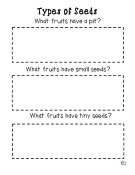 Seed Sorting (and other seed activities)