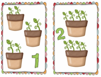 Seed Sprout Count-mult. activity