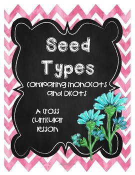 Seed Types Comparing and Contrasting Monocots and Dicots