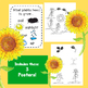 Seed to Flower ~ Read it! Draw it! Write it! (Life Cycle of a Flower)