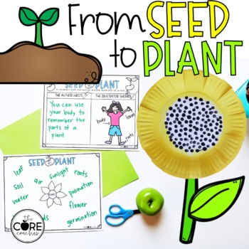 Seed to Plant- Informational Read Aloud, Lesson Plans and Activities