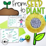 Seed to Plant: Informational Interactive Read-Aloud Lesson