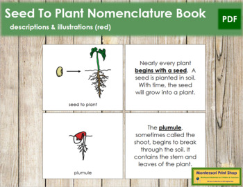 Seed to Plant Nomenclature Book (Red)
