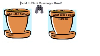 Seed to Plant Story Activities