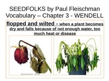 IR Seedfolks by Paul Fleischman Vocabulary - WENDELL ppt