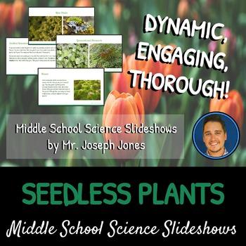 Seedless Plants: A Life Sciences Slideshow!