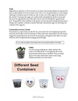 Seeds Chias