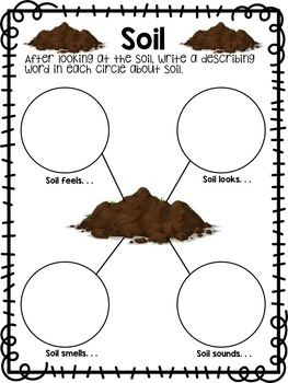 Seeds {Informational Text, Assessments, Experiments, & More}
