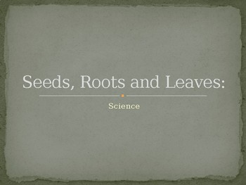Seeds, Roots, and Leaves PPT