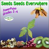 Seeds Seeds Everywhere PowerPoint