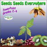 Seeds Seeds Everywhere PowerPoint