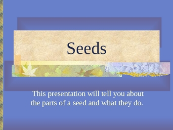 Seeds Self Directed Lesson Power Point with Follow Up Questions