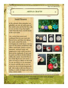 Seeds Themed Nature Education Unit-Stage 2 (Magic Forest Academy)