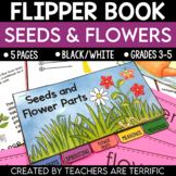 Seeds and Flower Parts Flipper Book