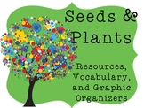 Seeds and Plants: Resources, Vocabulary, Graphic Organizers