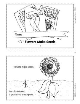 Seeds grow into new plants.