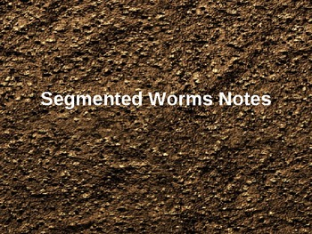 Segmented Worms PowerPoint