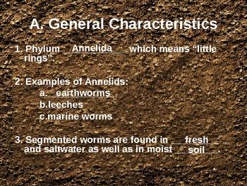 Segmented Worms PowerPoint