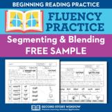 Segmenting & Blending Nonsense Word Fluency Homework Sampl