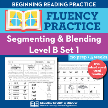 Segmenting & Blending Nonsense Word Fluency Practice Level B