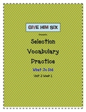 Selection Vocabulary - What Jo Did