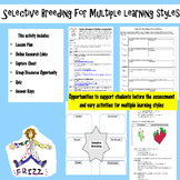 Selective Breeding for Multiple Learning Styles
