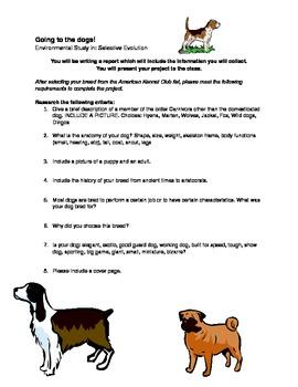 Selective Evolution Project - Dog Breeds