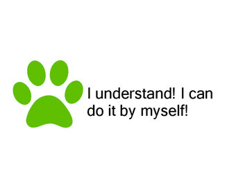 Self- Assessment with Paws