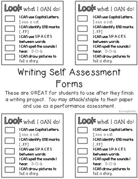 Self Assessments~ Developing Writers* Editable*