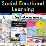 Self-Awareness   Social Emotional Learning   Digital & Print SEL Lessons