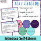 Self Esteem Lesson, Survey, and Activities